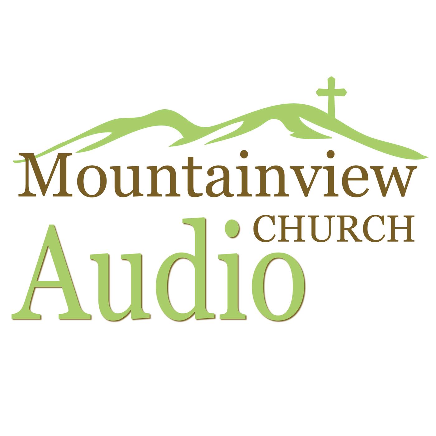 Why Doesn't God Fix This? (Habakkuk, Ep. 5 - Sermon Audio)